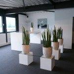 hoher-design-Konferenztisch-Referenzbild-04